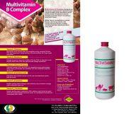 MULTIVITAMIN B COMPLEX