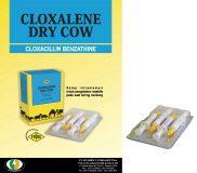 CLOXALENE DRY COW